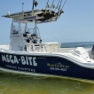 Mega-Bite Fishing Charters, LL